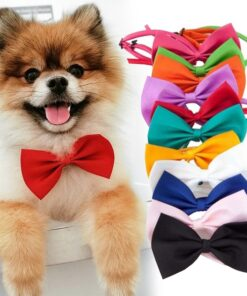 Kawaii Pet Dog Cat Necklace Adjustable Strap for Cat Collar Dogs Accessories Pet Dog Bow Tie Puppy Bow Ties Dog Pet Supplies