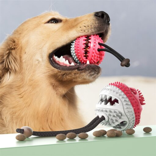Pet Teeth Cleaning Supplies Healthy Rubber Dog Chew Toy Toothbrush Dog Teeth Cleaning Ball Wholesale Squeaky Dog Toy Chew Ball